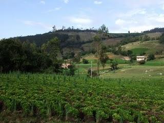 Ancash landscape