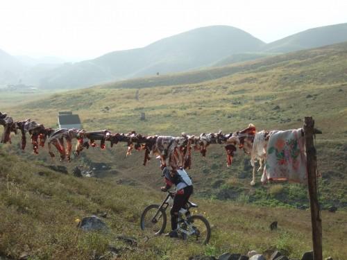 Peru mountain biker